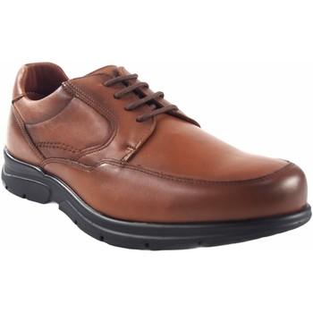 Sapatos Homem Sapatos Baerchi sapato  1250 couro Castanho
