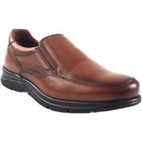 Sapatos Homem Mocassins Baerchi sapato  1251 couro Castanho