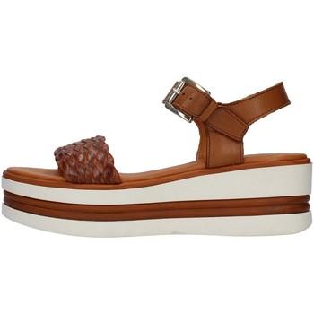 Sapatos Mulher Sandálias Pregunta PQ6605000 Castanho