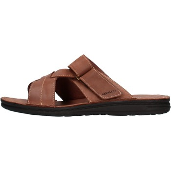 Sapatos Homem Chinelos Grunland - Ciabatta  castagno CI2830 MARRONE