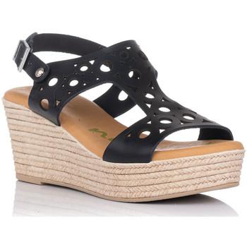 Sapatos Mulher Sandálias Zapp 4705 Preto