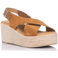 Sapatos Mulher Sandálias Zapp 4722 Castanho