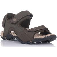 Sapatos Homem Sandálias desportivas Chiruca TUCUMAN Castanho