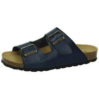 Sapatos Mulher Chinelos Biobio  Azul