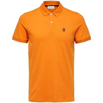 Textil Homem Polos mangas curta Selected Polo manches courtes  Aro embroidery russet orange