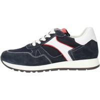 Sapatos Homem Mocassins Made In Italia 0380 Castanho