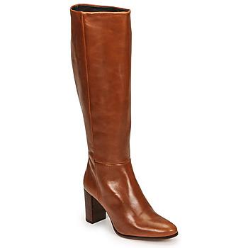Sapatos Mulher Botas Fericelli PACHA Castanho