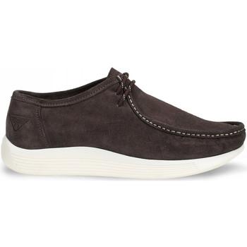 Sapatos Homem Mocassins Docksteps DSE106530 Castanho