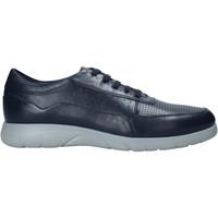 Sapatos Homem Sapatilhas Stonefly 216219 Azul