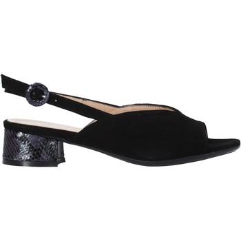 Sapatos Mulher Sandálias Soffice Sogno E2154 Preto