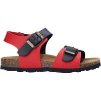 Sapatos Criança Sandálias Bionatura 22B 1002 Azul