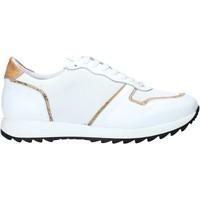 Sapatos Homem Sapatilhas Alviero Martini P170 306A Branco