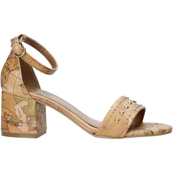 Sapatos Mulher Sandálias Alviero Martini E121 8391 Castanho