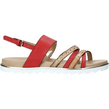 Sapatos Mulher Sandálias Alviero Martini E087 422A Vermelho