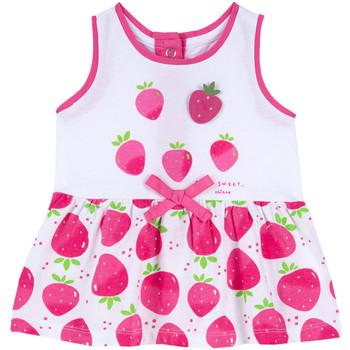 Textil Rapariga Vestidos curtos Chicco 09003810000000 Rosa