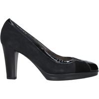 Sapatos Mulher Escarpim Confort 15I1442 Azul