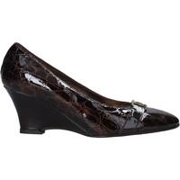 Sapatos Mulher Escarpim Confort 7558 Castanho