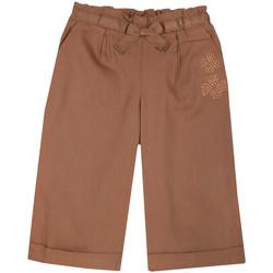 Textil Rapariga Calças finas / Sarouels Chicco 09008464000000 Castanho