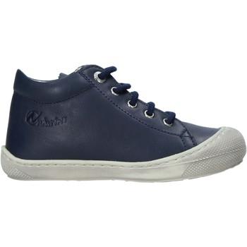 Sapatos Criança Sapatilhas Naturino 2012889 16 Azul