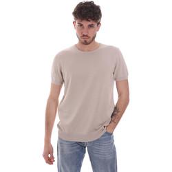 Textil Homem T-Shirt mangas curtas Gaudi 111GU53004 Bege
