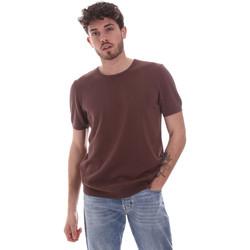 Textil Homem T-Shirt mangas curtas Gaudi 111GU53004 Castanho