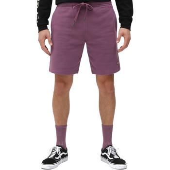 Textil Homem Shorts / Bermudas Dickies DK0A4XAYB651 Tolet