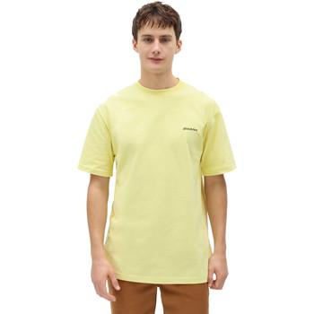 Textil Homem T-Shirt mangas curtas Dickies DK0A4X9OB541 Amarelo