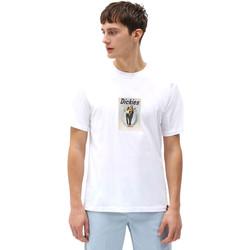 Textil Homem T-Shirt mangas curtas Dickies DK0A4X9IWHX1 Branco