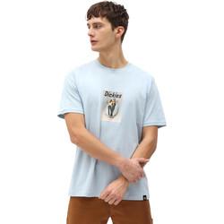 Textil Homem T-Shirt mangas curtas Dickies DK0A4X9IB551 Azul