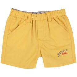 Textil Rapaz Shorts / Bermudas Chicco 09052637000000 Amarelo