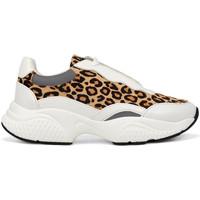 Sapatos Mulher Sapatilhas Ed Hardy - Insert runner-wild white/leopard Branco