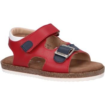 Sapatos Criança Sandálias Kickers 694917-30 FUNKYO Rojo