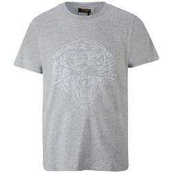 Textil Homem T-Shirt mangas curtas Ed Hardy - Tiger glow t-shirt mid-grey Cinza