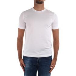Textil Homem T-Shirt mangas curtas Cruciani CUJOSB G30 Branco