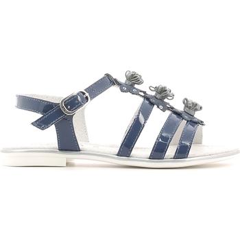 Sapatos Rapariga Sandálias NeroGiardini P631370F Azul