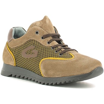 Sapatos Criança Sapatilhas Alberto Guardiani GK22343G Bege