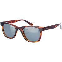 Relógios & jóias Homem óculos de sol Polaroid Gafas de sol Castanho