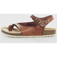 Sapatos Mulher Sandálias Trend Shoes ANABEL Marrón