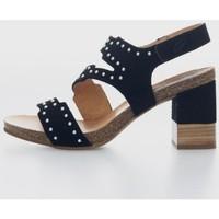 Sapatos Mulher Sandálias Penelope 5984 Noir