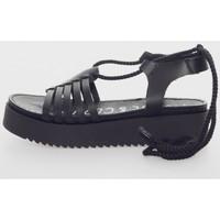 Sapatos Mulher Sandálias Musse & Cloud BILY Negro