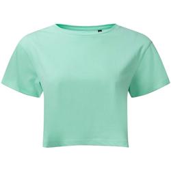 Textil Mulher Tops / Blusas Tridri TR019 Peppermint
