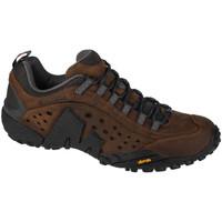 Sapatos Homem Sapatos de caminhada Merrell Intercept Marron