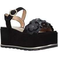 Sapatos Mulher Sandálias Docksteps DSE104973 Preto