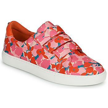 Sapatos Mulher Sapatilhas Cosmo Paris HAJIA Rosa / Florido