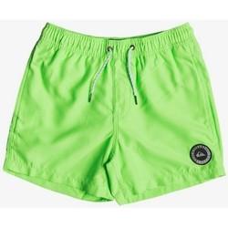 Textil Criança Fatos e shorts de banho Quiksilver EVERYDAY 13