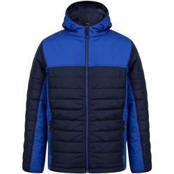 Textil Quispos Finden & Hales LV660 Marinha/Royal Blue