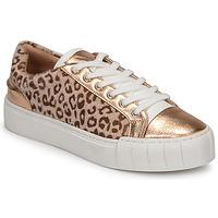 Sapatos Mulher Sapatilhas Vanessa Wu LEVANTER Leopardo