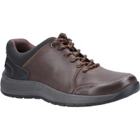 Sapatos Homem Sapatilhas Cotswold  Brown