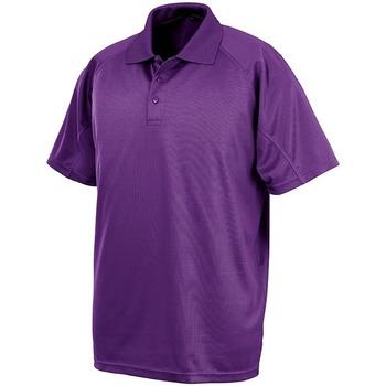Textil Homem Polos mangas curta Spiro S288X Púrpura
