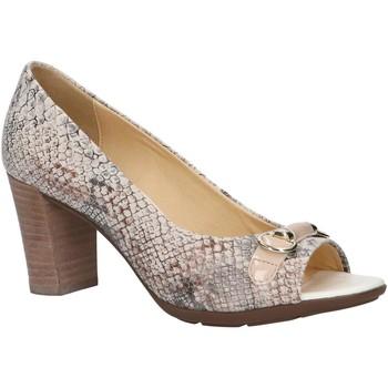 Sapatos Mulher Escarpim Geox D828XB 00041 D ANNYA SPUNTATO Hueso